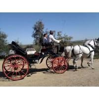 Transporte de ganado equipamiento y servicios ganaderos ganader a compra y venta entre - Seguro de coche para 6 meses ...