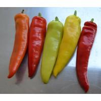Semillas de Chile Hungaro de Cera (Capsicum Annuum) - 10gr