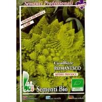 Semillas Ecológicas de Brocoli Romanesco - 50