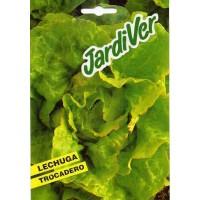 Semillas Lechuga Trocadero (Lactuca Sativa)