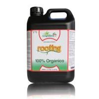 Agrobeta Rooting Black Line, 5L