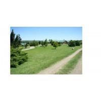 Campo en Uruguay 102 Hectareas - Rentable Com Casa Rural
