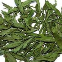 Hojas Secas de Stevia Rebaudiana, Infusiones. Edulcorante Natural. 10 Gramos.