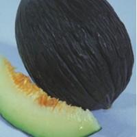 Melon Negro Tendral. Tardio. 300 Semillas.