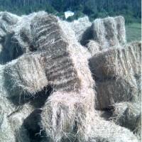 Paquetón de Paja de Castilla de Cebada. 1000 Kg