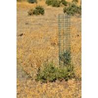 Protector Cactus (Verde) 100X21
