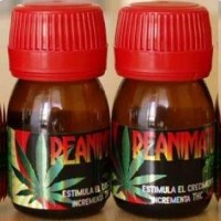 Reanimator Grow (Estimulante para Planta de C