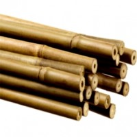 Tutores 90 Cm. 6/8 Mm. Pack de 1000