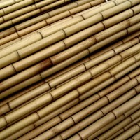 Tutores de Bambú 120 Cm. 8/10 Mm.