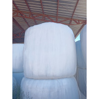 Alfalfa Regenerativa Primer Corte Ensilado