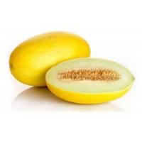 Bandeja 6 Plantas Melon Amarillo