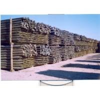 Postes de Madera para Uso Agrícola y Forestal. 2 M / 8-10 Cm Grosor