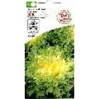 Semillas Bio Escarola de Hoja Chicoría 4 Gr