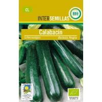Semillas Ecologicas Calabacin Belleza Negra 5Gr
