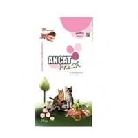Ancat Fresh Kitten Alimento para Gatitos hast