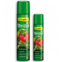 Brillo Planta Natural, Spray de Flower