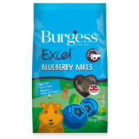 Burgess Excel Galletas Arándanos 80 Grs