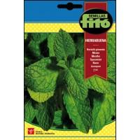Hierbabuena (Mentha Spicata) 0.2 Gr Semillas