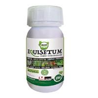Masso Green Fungicida Ecológico Equisetum 250