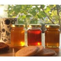 Miel Combinada 6 Kg: Azahar, Milflores, Limón, Tomillo, Lavanda y Montaña.