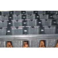 Pack de 5 Bandejas Semillero Plastico Negro. 40 Alveolos X 5