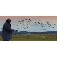 Agrilaser® Lite,  Repelente de Pájaros, Ahuyentador de Pájaros