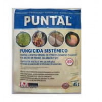 Massó Fungicida Sistémico Puntal, sobre 45 Gr