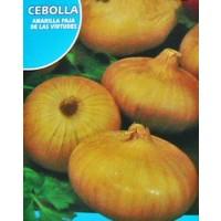 Cebolla Amarilla Paja Virtudes. Envase Hermético de 4 Gr/800 Semillas.