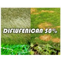 Diflufenican 50% (1/2 Litro)