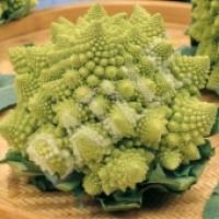 Brócoli Romanesco. Semillas 8 Gr