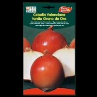 Cebolla Valenciana Tardía Grano de Oro