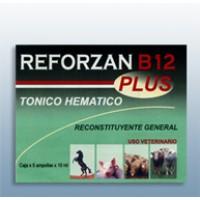 Reforzan B12