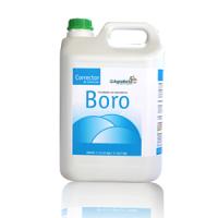 Agrobeta Corrector de Boro, 5 L