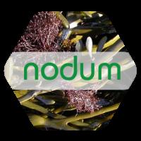Nodum, Bioestimulante Natural Obtenido de Alg