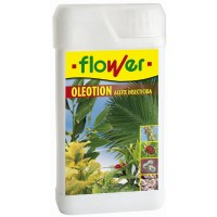 Oleotion 400 Ml