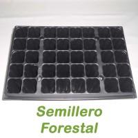 Semilleros Forestales - 40 Alveolos