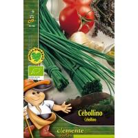 Cebollino. Semillas Ecológicas 2 Gr