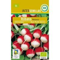 Semilla Ecologica Rabano Rojo 5Gr