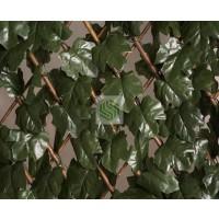 Celosia Extensible con HOJA Decorativa 1x2