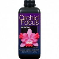 Orchid Focus Bloom 1 Litro