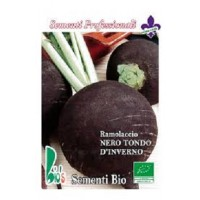 Rabano Negro Redondo de Invierno - 25 Gr Semillas Ecológicas