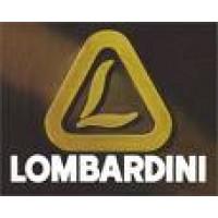 Repuestos y Recambio Motores Lombardini Diesel Montados en Motocultores y Tractores Pascuali, Agria