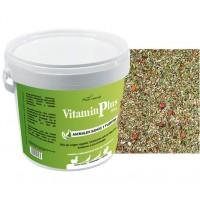 Vitaminplus 375g