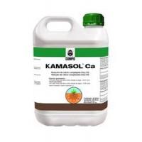 Kamasol CA, Corrector de Carencias de Compo E