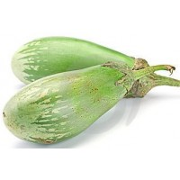 Planta Berenjena Ninfa Verde en Maceta de 10 Centímetros