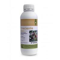 Bioinsecticida a Base de Piretrinas Naturales Creciente 1L