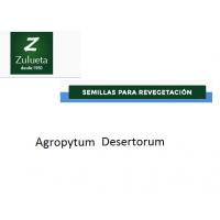 Agropyrum Desertorum, Semillas de Recuperación de Zulueta