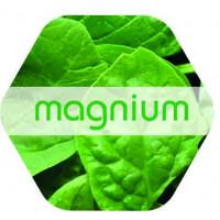 Magnium, Solución Ecológica de Magnesio 1 L