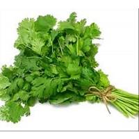 Cilantro. Coriandro.aromatica. Cultivo Ecologico. 100 Gr / 9.000 Semillas