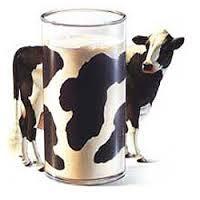 Curso Manipulador de Alimentos Online Sector Lácteo. Ahora 8€